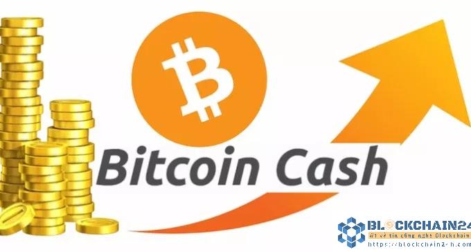 Bitcoin Cash là gì? Cùng tìm hiểu về đồng tiền ảo này