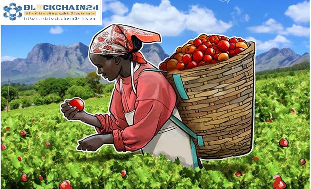 Blockchain và kỳ vọng mới cho nông nghiệp Việt
