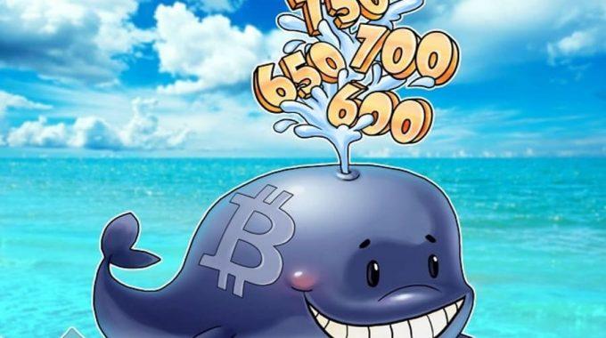 1 tỷ Ripple (XRP) tương ứng 300 triệu USD được rút ra khỏi ví ký quỹ