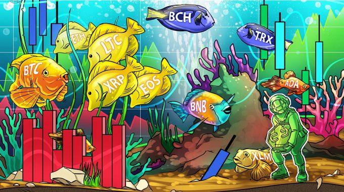 Phân tích giá ngày 30/05: Bitcoin, Ethereum, Ripple, Bitcoin Cash, Litecoin, EOS, Binance Coin, Stellar, Cardano, TRON