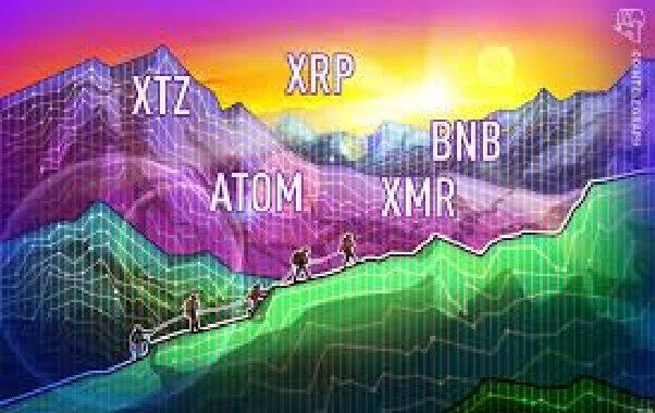 Top 5 coin hoạt động tốt nhất tuần trước: XTZ, ATOM, XRP, XMR, BNB