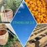 Ethereum 2.0 là gì? Vì sao ETH2.0 được đánh giá là cuộc cách mạng tiền tiện tử?